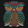 Picture of Multi-Color Owl