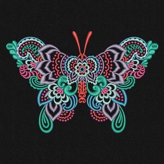 Picture of Multi-Color Butterfly